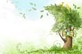 Картинка попугаи, ветер, листья, дерево, птицы, рисунок, створки, дупло