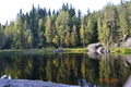 Картинка лес, деревья, природа, озеро, Карелия