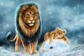 Картинка животные, хищник, лев, царь, отец, львенок, сын