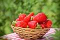Картинка strawberry, спелая, красные, корзинка, ягоды, berries, fresh, клубника