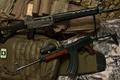 Картинка оружие, автоматы, SIG, Cz 858, SG 550, Swiss Arms