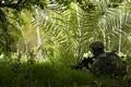 Картинка экипировка, трава, автомат, Солдат, лес
