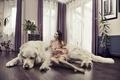 Картинка собака, комната, креатив, кружка, халат, растения, шатенка, шторы, девушка