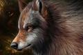 Картинка графика, волк, шерсть, арт