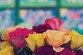Картинка цветы, розы, желтые, лепестки