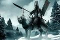 Картинка воин, снег, Тигр