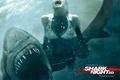 Картинка вода, девушка, акула, ужас, челюсти в 3d