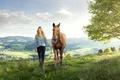 Картинка Девушка, Лошадь, Трава, Животные
