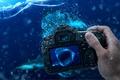 Картинка уровень воды, акула, фотоаппарат, Вода