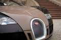 Картинка Bugatti, veyron, сетка