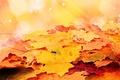 Картинка ворох, осень, звёзды, листья
