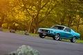 Картинка дорога, лес, Mustang, Ford, 1967, Fastback, боком