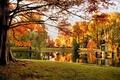 Картинка park, парк, природа, Boston, Бостон, деревья, nature, pond, fall, autumn, осень, trees, пруд, США