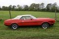Картинка Форд, природа, 1973, Muscle car, Мустанг, классика, Mustang, Ford