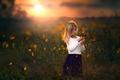 Картинка девочка, поле, цветы, закат