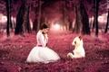 Картинка Sweet little girl, девушка, Alessandro Di Cicco, мишка