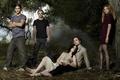 Картинка Twilight, сумерки, актеры