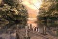 Картинка деревья, озеро, причал