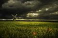 Картинка вечер, поле, природа, маки, лето, мельница