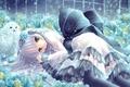 Картинка цветы, снег, сова, снежинки, Девочка