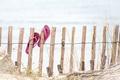 Картинка лето, забор, пляж