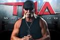 Картинка бицепс, очки, актёр, Терри Джин Боллеа, ринг, шоумен, Халк Хоган, рестлер, Hulk Hogan, мышцы, поза