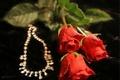 Картинка цветы, розы, ожерелье, арт