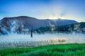 Картинка туман, рассвет, озеро, трава, горы