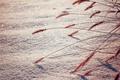 Картинка зима, макро, снег