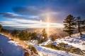Картинка солнце, природа, рассвет, пейзаж, зима