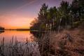 Картинка природа, озеро, камыш