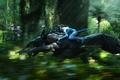 Картинка Аватар, лес, скорость