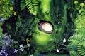 Картинка девочка, цветы, лежит, листья, Hayao Miyazaki, нора, Хаяо Миядзаки, Tonari no Totoro, мой сосед Тоторо, ...