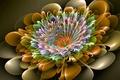 Картинка цветок, линии, узор, краски, объем