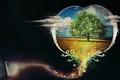 Картинка Дерево, облака, компьютер, мечта