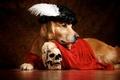 Картинка перо, плащ, ретривер, берет, Гамлет, череп