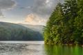 Картинка утро, озеро, лес