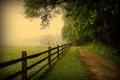 Картинка Пенсильвания, природа, туман, дорога, деревья, Pennsylvania, забор, USA, США