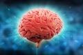 Картинка intelligence, brain, mind