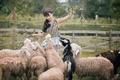 Картинка природа, улыбка, овцы, азиатка, стадо