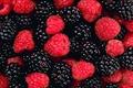 Картинка ягоды, еживика, малина