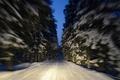 Картинка макро, снег, зима, движение, деревья, дорога, Finland, Финляндия