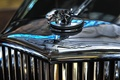 Картинка Jaguar, эмблема, шильдик, хром, ягуар