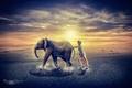 Картинка Креативная реклама, закат, пустыня, пыль, солнце, девушка, слон