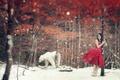 Картинка медведь, девушка, ситуация, зима