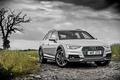 Картинка ауди, Audi, универсал, Avant
