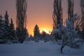 Картинка Snow, Frost, Winter, Sunset