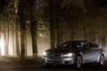 Картинка лес, машины, серый, Jaguar