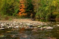 Картинка river, forest, деревья, fall, autumn, осень, trees, Nature, река, лес