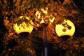 Картинка свет, огни, жёлтый, листва, фонарь